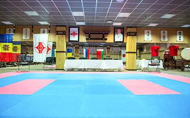 Доджо федерации киокушинкай карате Молдовы