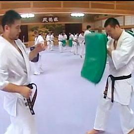 Подготовка сборной Японии